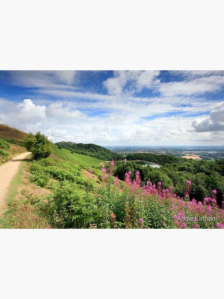 Malvern Hills : Glorious Summer by AngelaBarnett
