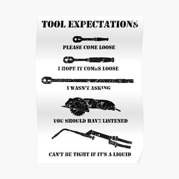Expectativas de la herramienta Póster