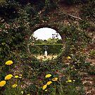 Through the Garden Wall by JLaverty