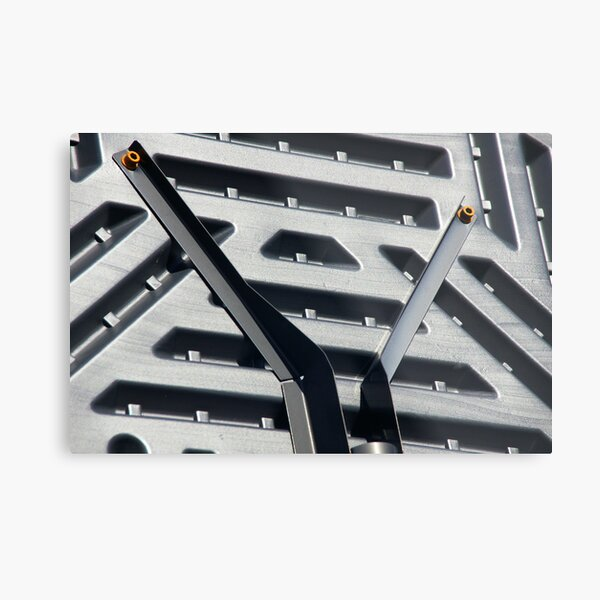 Solve This Puzzle: What Is This Mystery Object? Metal Print