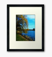 My Weeping Willow Tree ©  Framed Print