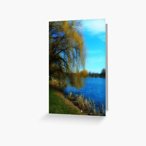 My Weeping Willow Tree ©  Greeting Card