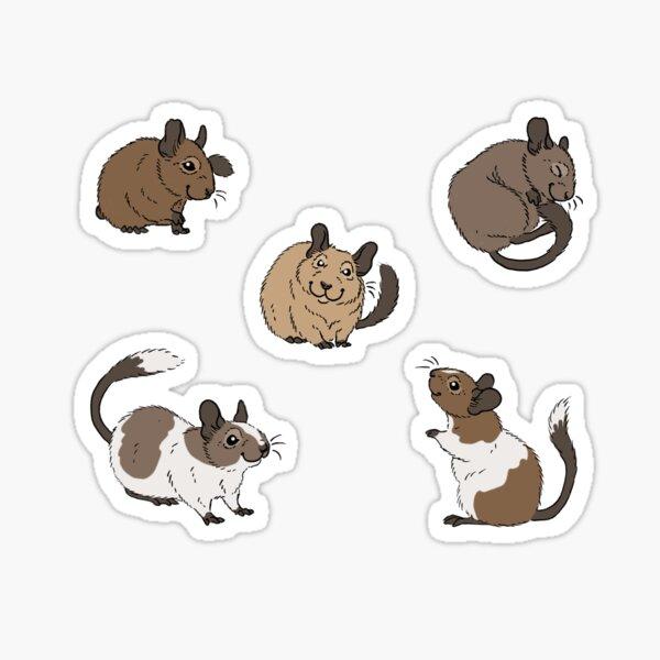Degu Group Sticker