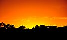 Red fire light.....sunset delight by Helen Vercoe