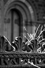 The Cathedral Fence by Vince Russell