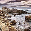 Tsitsikama Coast by Scott Carr