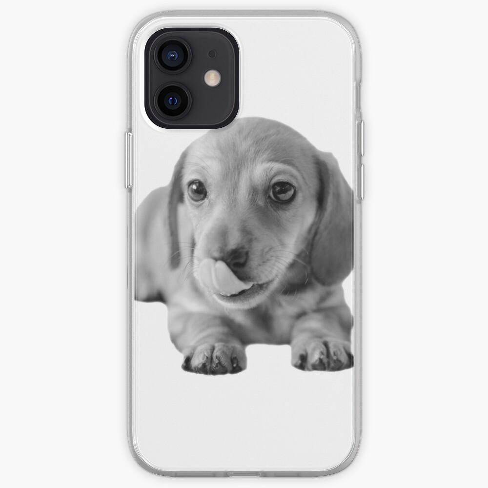 Little Cute Dachshund Puppy iPhone Case & Cover