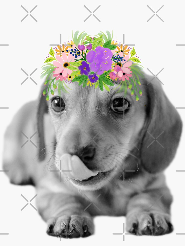 Cute Floral Dachshund Puppy by tribbledesign