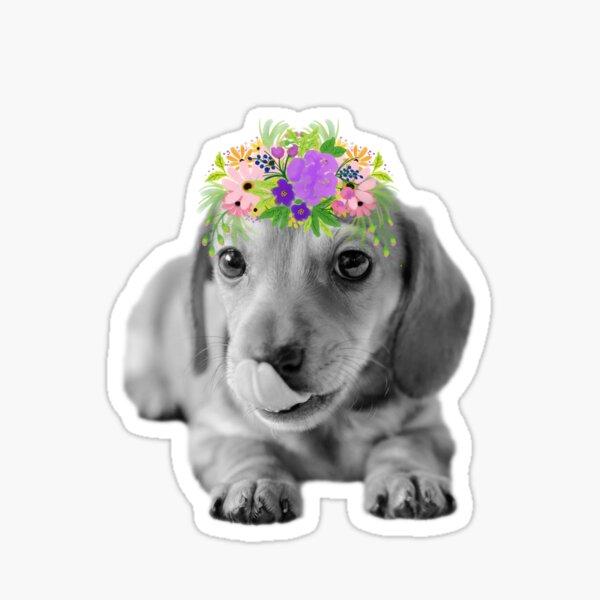 Cute Floral Dachshund Puppy Sticker