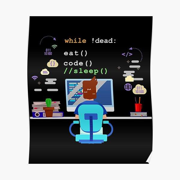 Eat Sleep Code Computer Science Programming graphic Poster