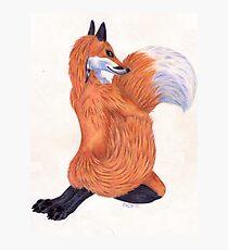 Anthro Fox Photographic Print
