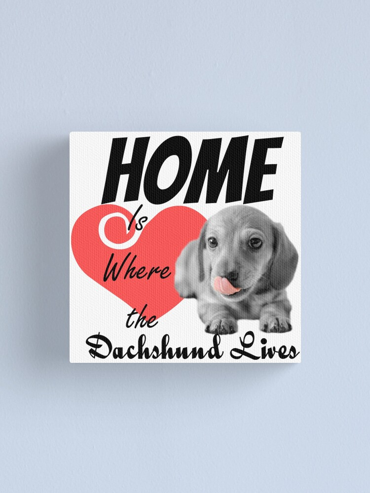 Alternate view of Home is Where the Dachshund Lives Canvas Print