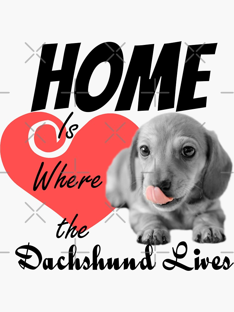 Home is Where the Dachshund Lives by tribbledesign