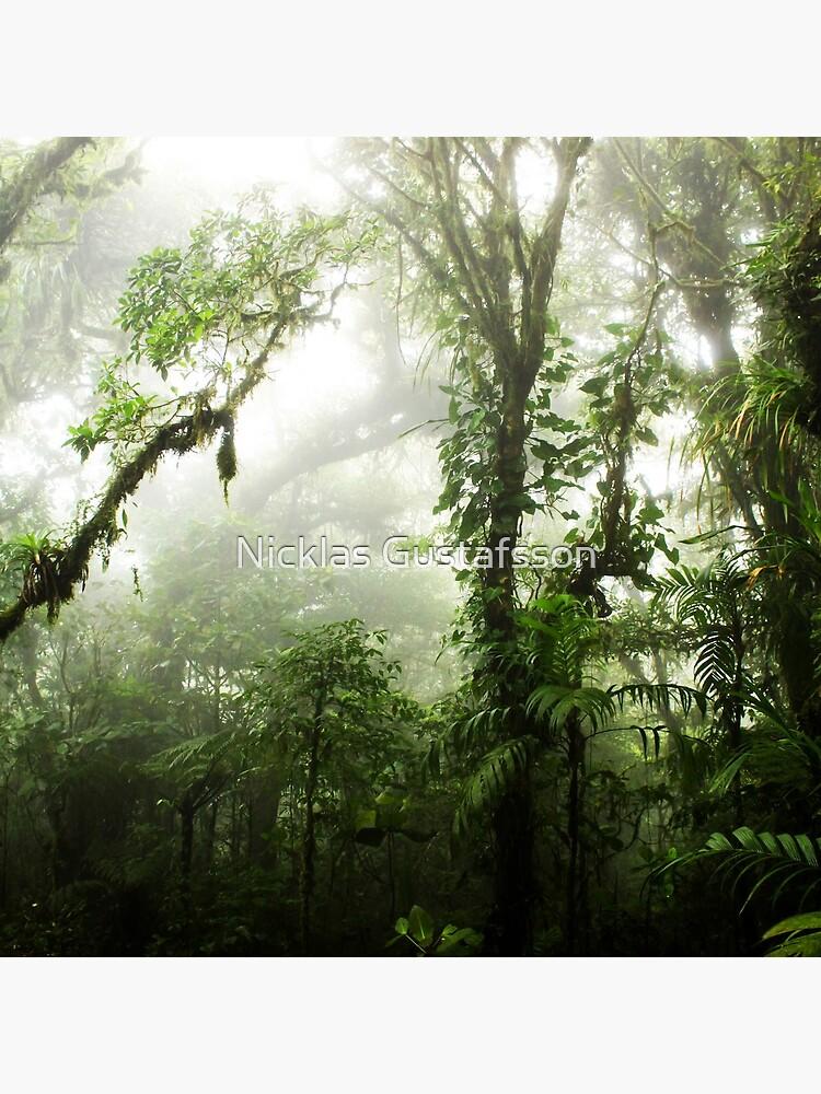 Wolkenwald von Nicklas81