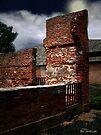 Prison Past Tense by RC deWinter