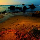 Coastal California by Luuezz