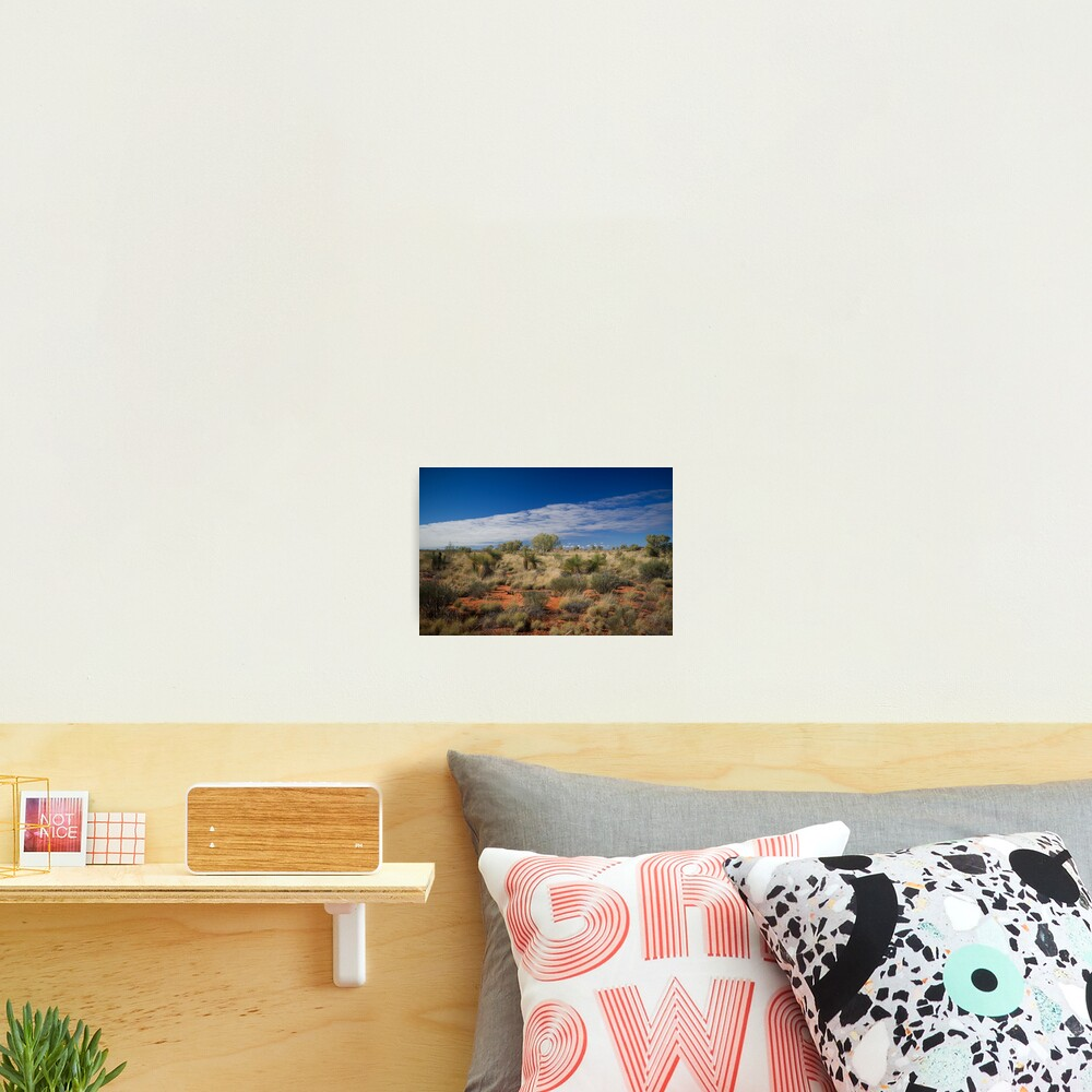 Canning Grass Trees Photographic Print