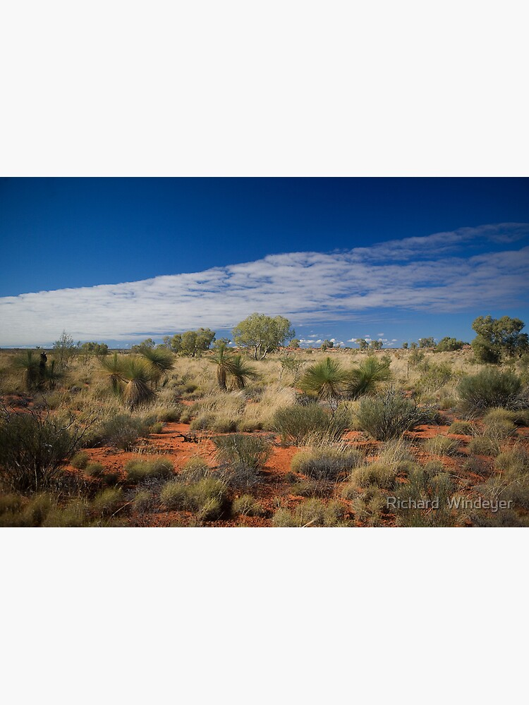 Canning Grass Trees by RICHARDW