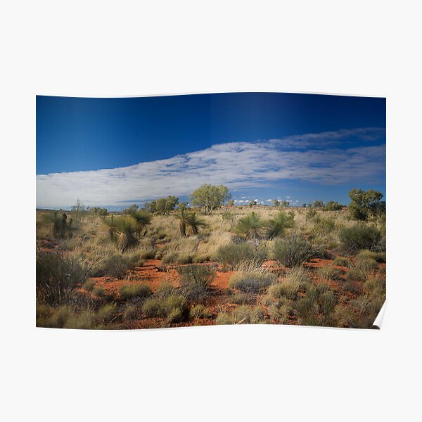 Canning Grass Trees Poster