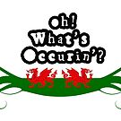 Oh Whats Occurin'? by Steve's Fun Designs