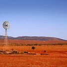Water vane in the Outback by John Wallace