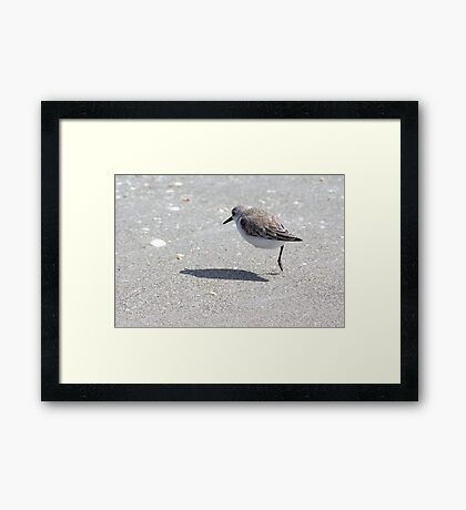 Hop-a-Long Framed Print