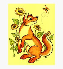Red Wolf in Summer - Sunflowers and Butterflies Photographic Print