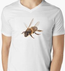 Bee species apis mellifera common name Western honey bee or European honey bee T-Shirt
