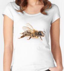 Bee species apis mellifera common name Western honey bee or European honey bee Women's Fitted Scoop T-Shirt