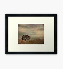 The Lonely Days Framed Print