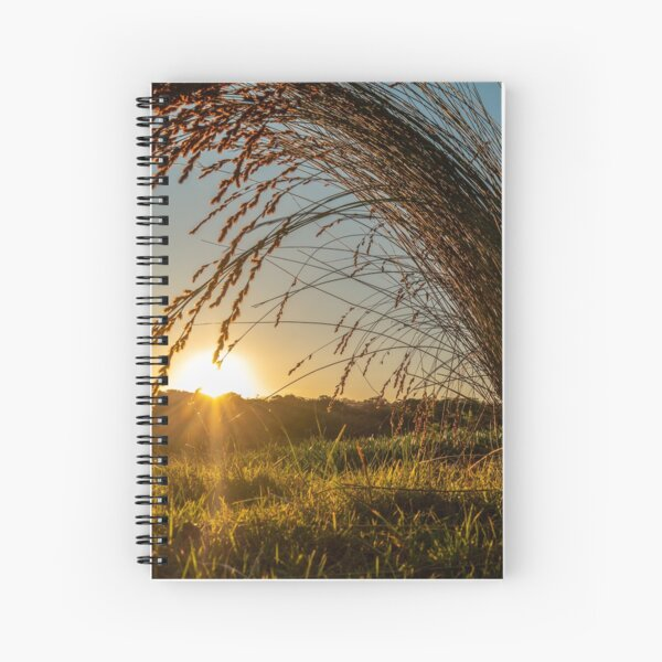 Grass fronds in early morning light [3] Spiral Notebook