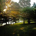 Sunrise Sunbeams Near Cades Cove by Robert H Carney