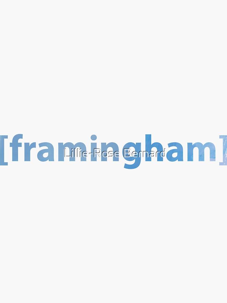 Framingham, MA by groquestudio