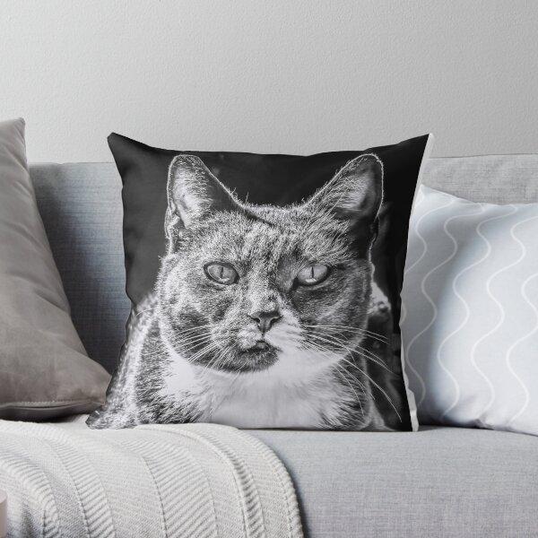 Love cats? Throw Pillow