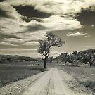 Maryland Road by Kym Howard