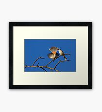 attractive Framed Print