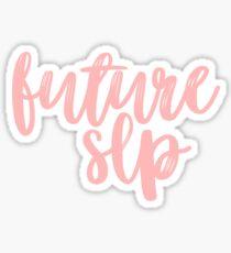 Pegatina Futuro SLP