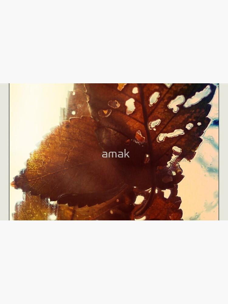 Frozen Fall by amak