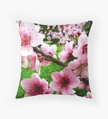 Blossom of the Nectarine Tree -  Spring 2009 Throw Pillow