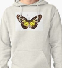 """Butterfly species Parantica aspasia common name """"Yellow Glassy Tiger"""" Pullover Hoodie"""