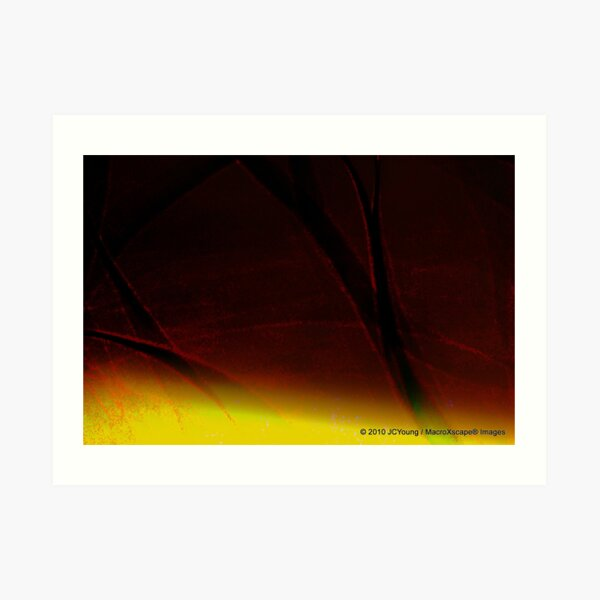The Warming of Earth Art Print