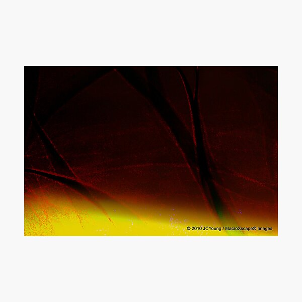 The Warming of Earth Photographic Print