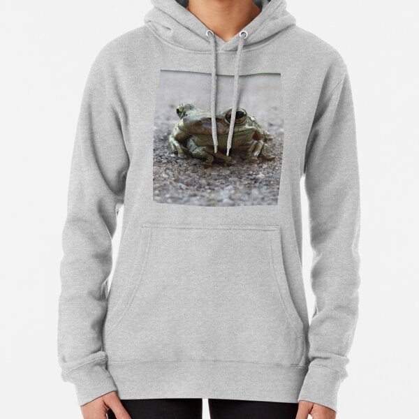 Florida Toad on the road Pullover Hoodie