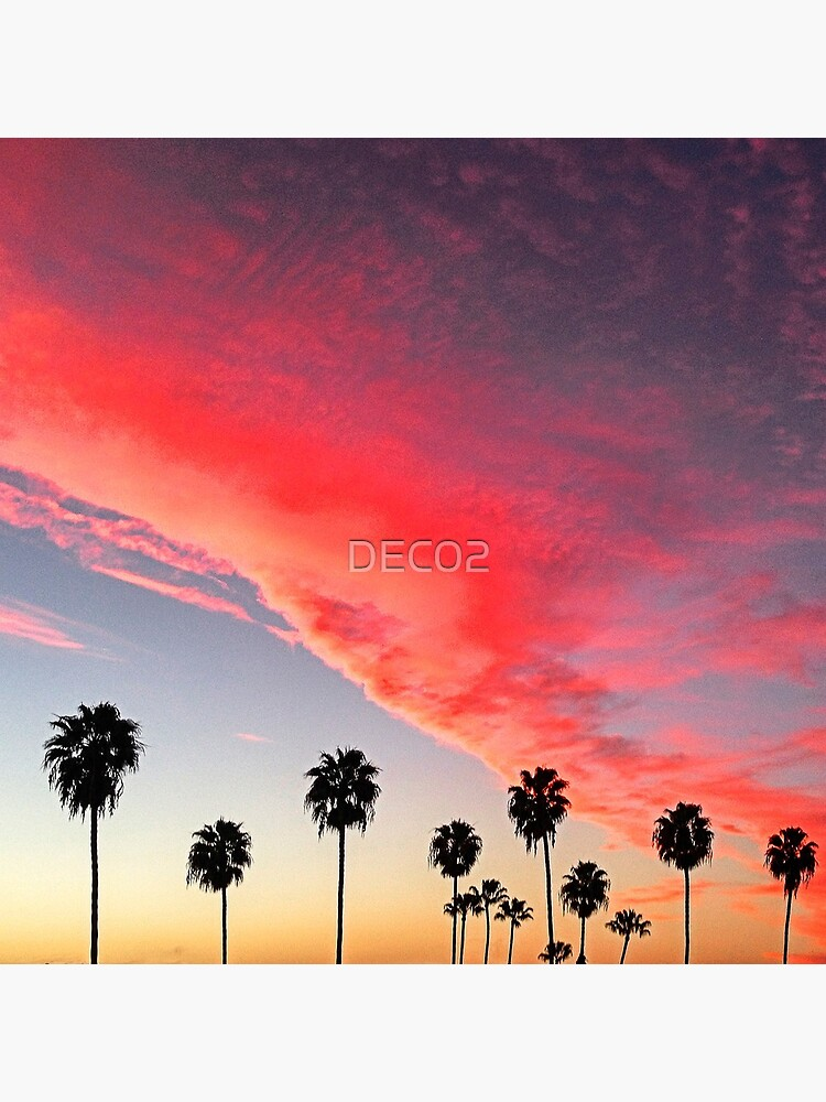 Red Scarlet Sunset Over Palm Trees Art Photo by DEC02