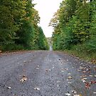 Midwest road, Minnesota Autumn by ChelsiGraphics