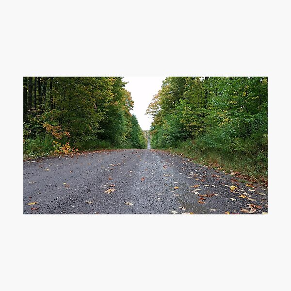 Midwest road, Minnesota Autumn Photographic Print