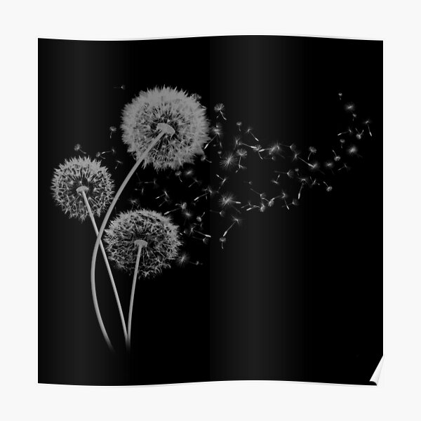 Dandelion Wishes on Black Poster