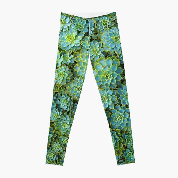 Green Succulent Leggings
