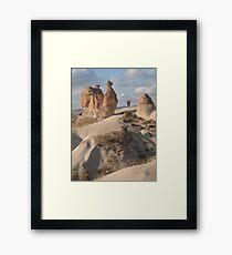 Stone Camel - Capadoccia Turkey Framed Print