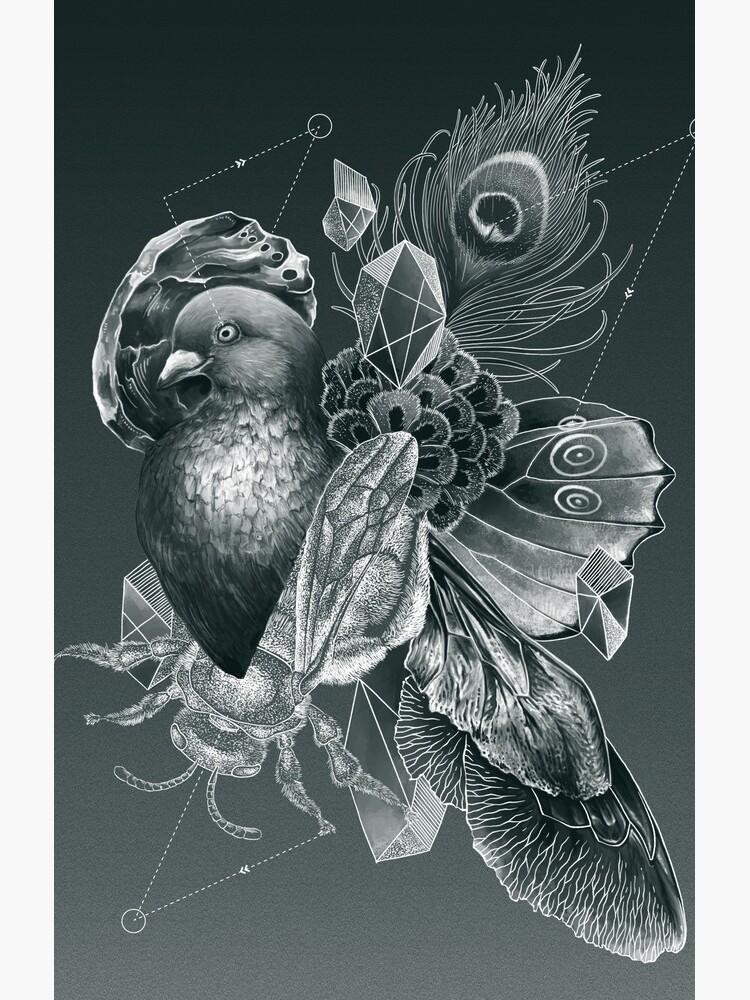 Iridescence by franzanth